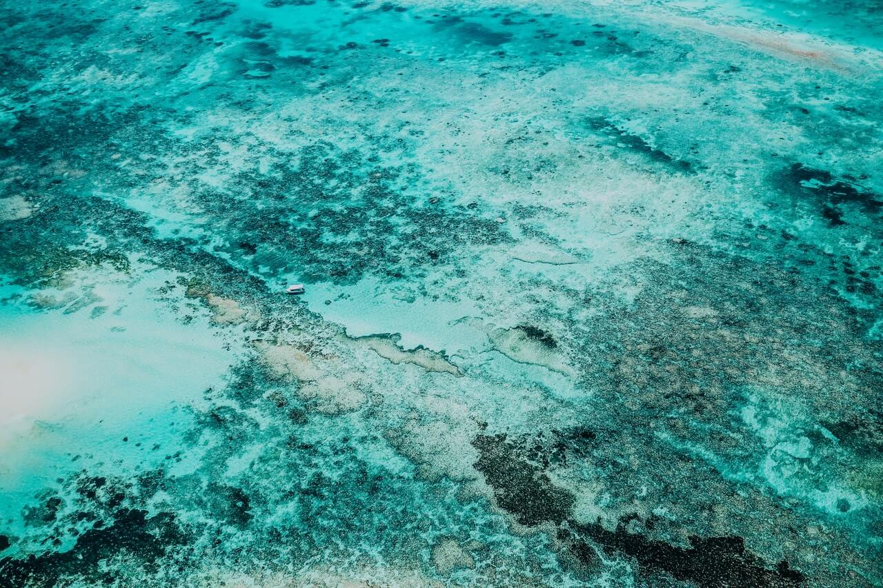 A Reef Credit is a tradable unit of pollution reduction